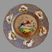 "Royal Doulton ""Bird of Paradise"" Motif Plate (4 of 6) - E Percy/Robert Allen"