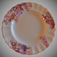 "Set of 6 Copeland Spode ""Chelsea Garden"" Bread & Butter Plates - Pattern R9781"