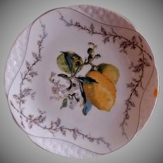 Charles Haviland & Co. - Limoges Factory Decorated Fruit Plate - Circa 1870's - Designed By Henri Pallandre