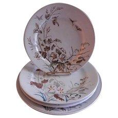 "Alfred Meakin Transferware Ironstone China ""Morning Glory"" Pattern Plates - Grouping of 4"