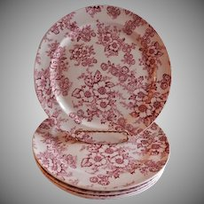 "Taylor Smith Taylor ""Dogwood Red Chintz"" Pattern Dinner Plates - Set of 5"