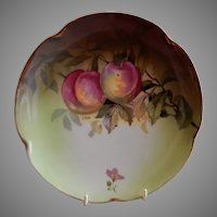 Jaeger & Co. Cabinet Plate w/Peaches Motif - Signed A. Koch