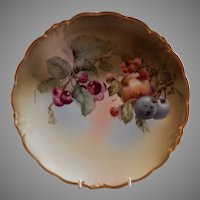 Jaeger & Co. Cabinet Plate w/Mixed Fruits Motif - Signed Koch