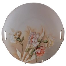 R.S. Germany (Blue Mark) Cabinet Plate w/Multi-Colored Carnations Floral Motif