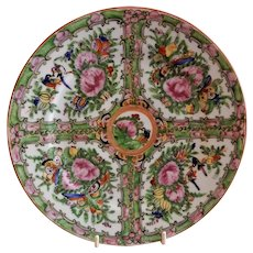 """Chinese Export Porcelain """"Rose Canton"""" Plate - 19th Century"""