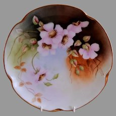 Jaeger & Co Bavaria H. P. Cabinet Plate w/Pink Wild Roses Motif - Artist Signed & Dated