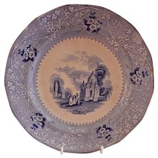 "W Adams & Sons Ironstone Blue Transfer-ware ""Columbia"" Pattern Plate"