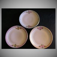 Set of 6 - Hand Painted Floral Bavaria Luncheon Plates