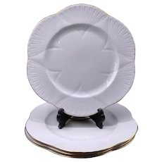 Shelley Regency Dainty white dinner plates
