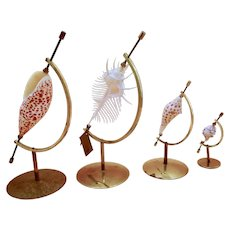 Marguerite Stix design inspired shells and vintage seashell stands