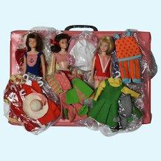Large Mattel Skipper Scooter Lot - Dolls, Clothes, Case