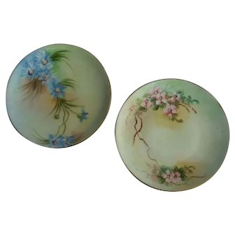 Pair hand painted Bavaria floral plates