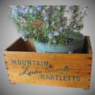 Vintage Wooden Fruit Crate Bartlett Pears