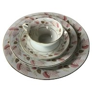 Set of Noritake China in the Rosanne pattern ~ 1950s and 1960s china place setting - Fall autumn
