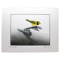 Hooded Jag - Birds on Prints Signed Print by Don McMahon