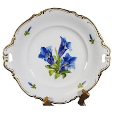 Hutschenreuther - Hand Painted Double Handled Decorative Plate
