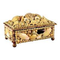 Large Victorian Shell Folk Art Dresser Box
