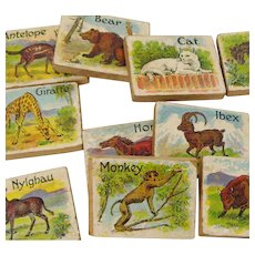 Animal Picture ABC Blocks