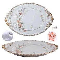 Krautheim & Adelberg Selb Oval Serving Plate