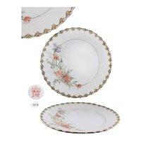 Krautheim & Adelberg Selb Dinner Plate