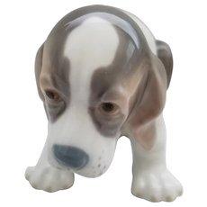LLadro - Sitting Beagle Puppy #01071