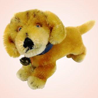 """Steiff dachshund puppy 4"""" dog Bazi with IDs, 1960s vintage"""