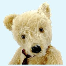 "Steiff teddy bear, 20"" large blond 1950s OTB, working growler"