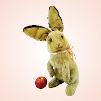 """Steiff rabbit Manni with button, large 18"""" begging bunny, 1961 to 1964 vintage"""
