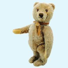 "Steiff Original Teddy Bear, last edition 1965 to 66, 11"""