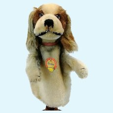 Steiff hand puppet cocker spaniel dog, all IDs, vintage 1959 to 64