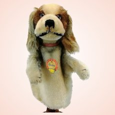 Steiff hand puppet cocker spaniel dog, all IDs, vintage 1959 to 64