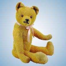"Antique 1910s German teddy bear, short yellow mohair, 18"""