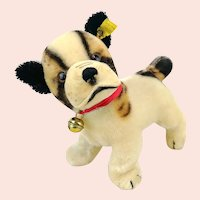 """Steiff Bulldog Bully with IDs, 6"""" made 1966 to 1967"""