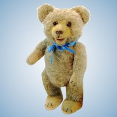 1950s English vintage teddy bear, free standing, open mouth, 11""