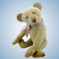 """Antique teddy bear by Educa, German made 1910s to 1920s, 20"""", white mohair"""