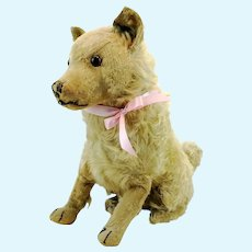 "Steiff dog Chow Chow prewar 1928 to 1931 only, large 14"" sitting"