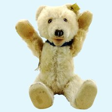 "Steiff Teddy Baby Bear with IDs, US Zone tag, vintage 1949 to 1953, 9"", squeaker"