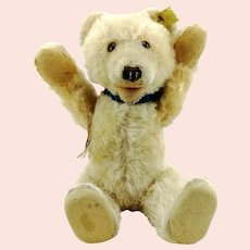 """Steiff Teddy Baby Bear with IDs, US Zone tag, vintage 1949 to 1953, 9"""", squeaker"""