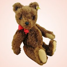 """Steiff Teddy Bear with IDs, excellent brown OTB, 16"""", squeaker, 1959 to 1964"""