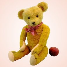 """German vintage Petz teddy bear with ID, made by Kiesewetter, late 1940's, 20"""""""