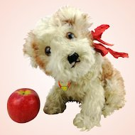 """Steiff puppy dog Molly with chest tag, large 9"""" sitting, vintage made 1949 to 1954 only, swivel head"""