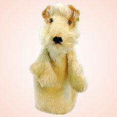 Steiff hand puppet Foxy terrier dog with IDs, vintage 1951 to 58