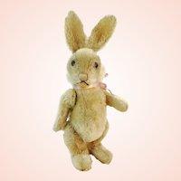 "Steiff rabbit Niki no IDs, jointed midi sized 10"", vintage 1951 to 1964"