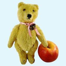 "Steiff Original Teddy Bear 8"" yellow mohair vintage 1950 to 1964"