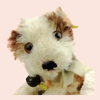 """Steiff puppy dog Molly, all IDs, 1960s vintage, smallest 4"""" edition"""