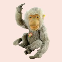 "Steiff Baboon Coco with all IDs 14"" produced 1951 to 61 only"
