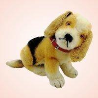 "Steiff dog Beagle Biggie 7"" with IDs, squeaker, 1960s vintage"