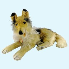 """Steiff Collie with IDs 17"""" long lying made 1960 to 71"""