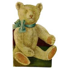1925 Teddy Bear shaped childrens book with beautiful illustrations