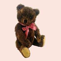 "Steiff Original Teddy Bear brown with growler 16"", 1956 to 64 made"